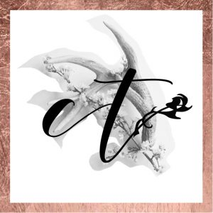 Crystals Tips Logo design
